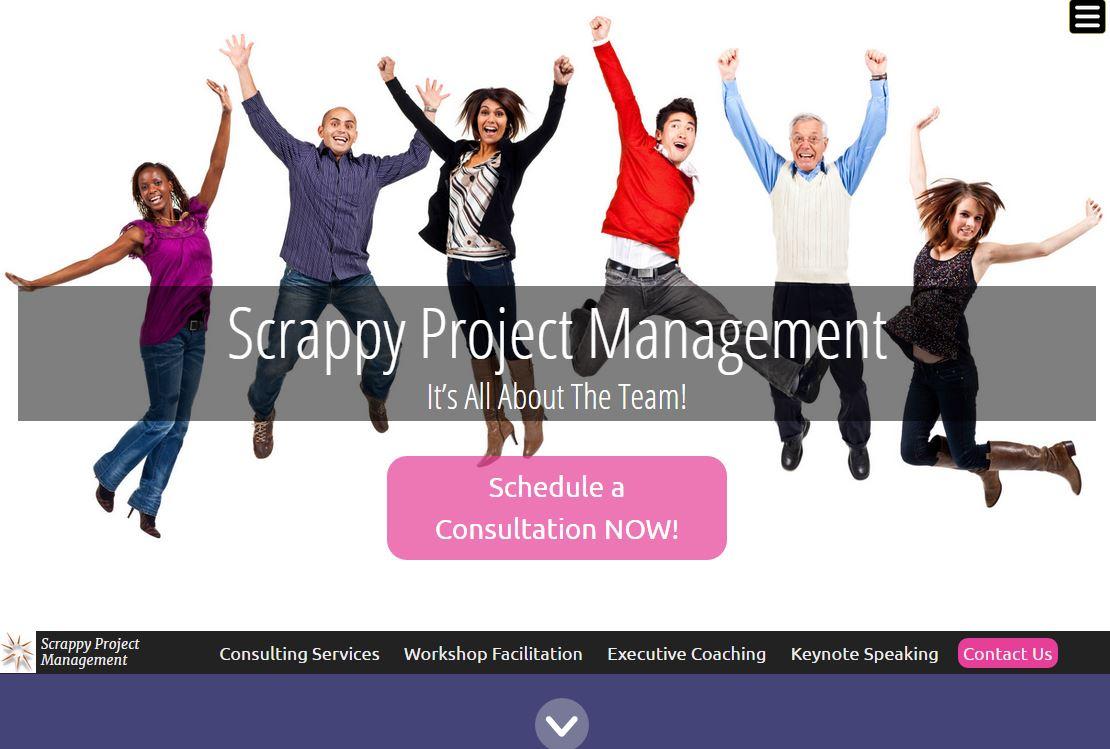 scrappyprojectmanagement.com
